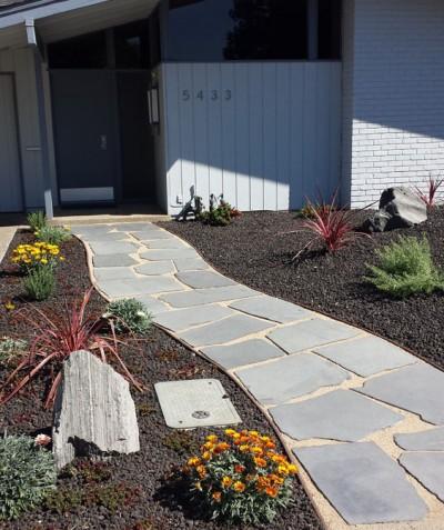 drought tolerant landscape sacramento, low maintenance landscaping sacramento, dry summer landscaping sacramento