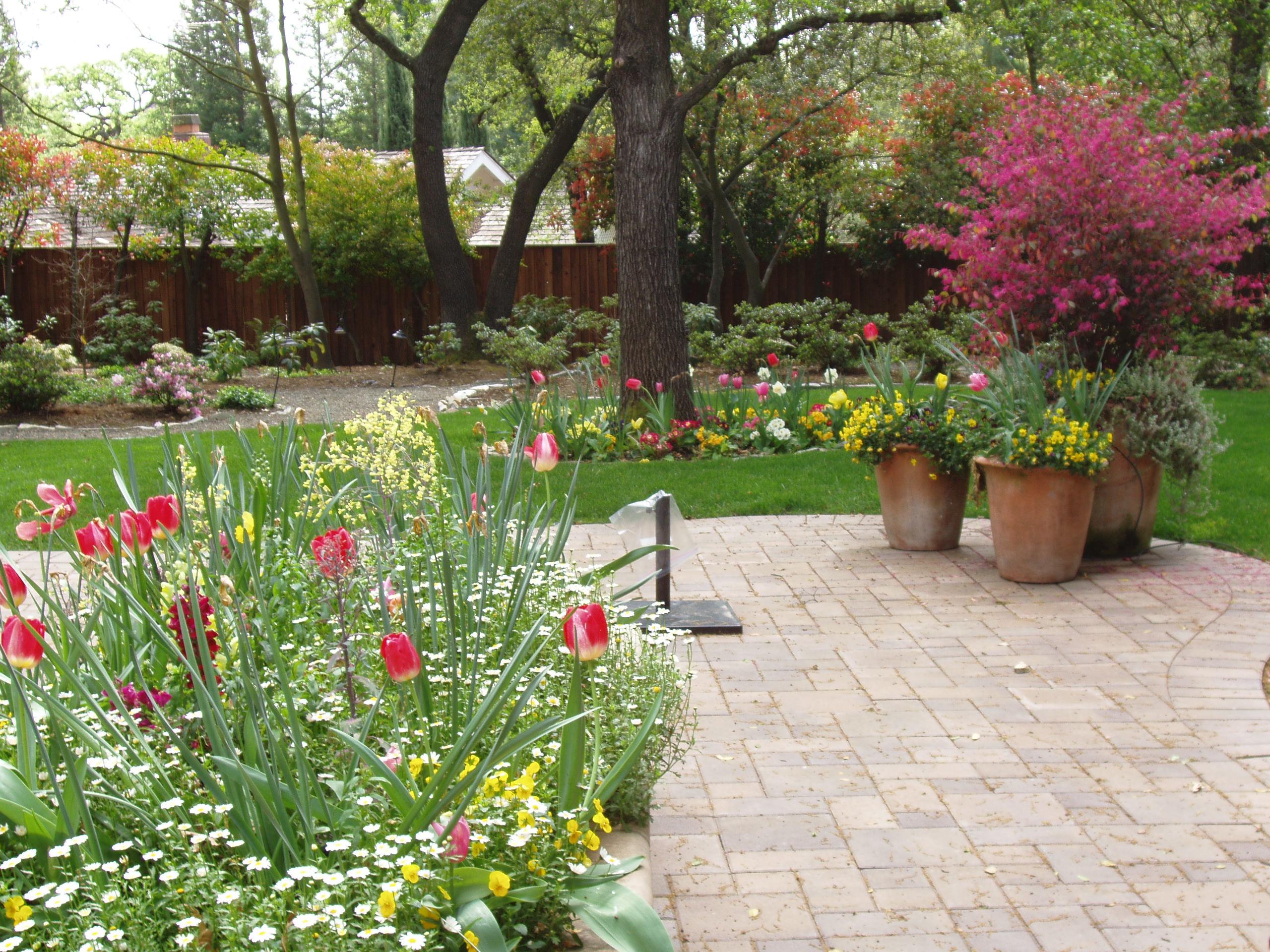 fall u0026 winter flower beds landscape makeover folsom u0026 sacramento