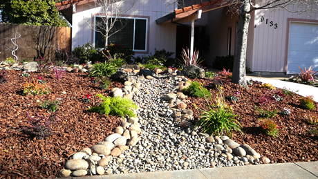 Drought Tolerant LandscapesDrought Gardening Dry Stream Bed