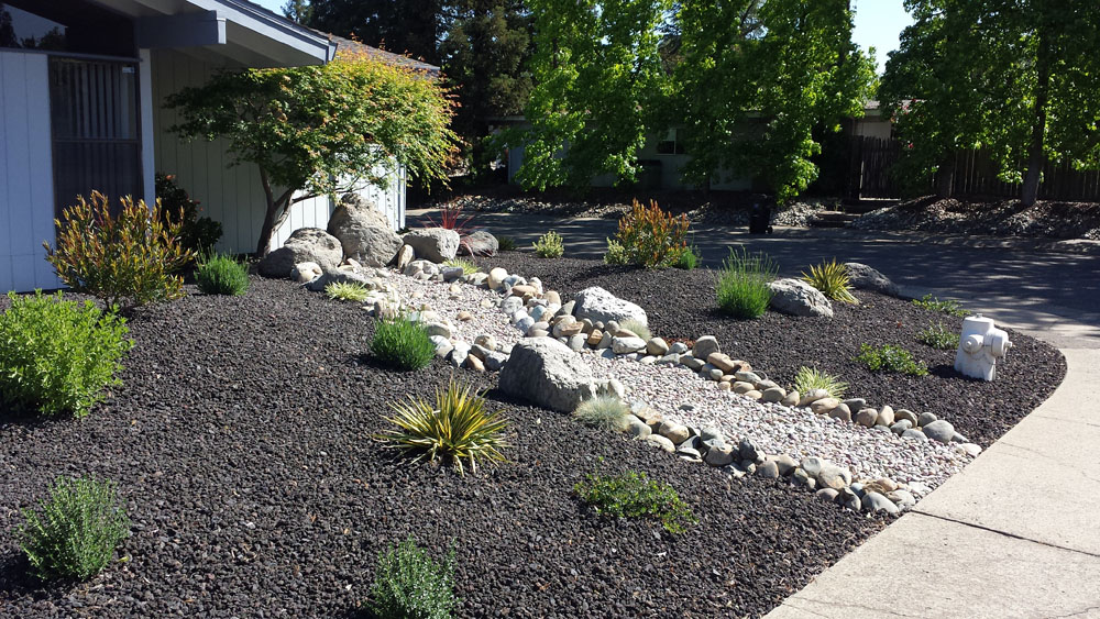 Drought tolerant landscaping folsom sacramento for Ideas for low water landscapes