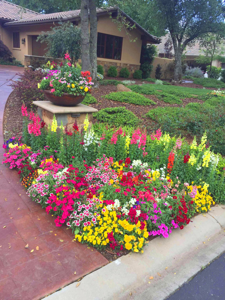 Fall winter flower beds landscape makeover folsom for Images of landscaping flower beds