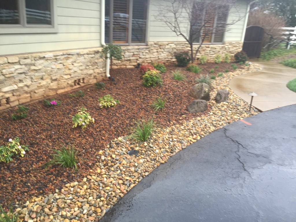 Drought landscaping stunning drought tolerant landscape for Drought resistant landscaping