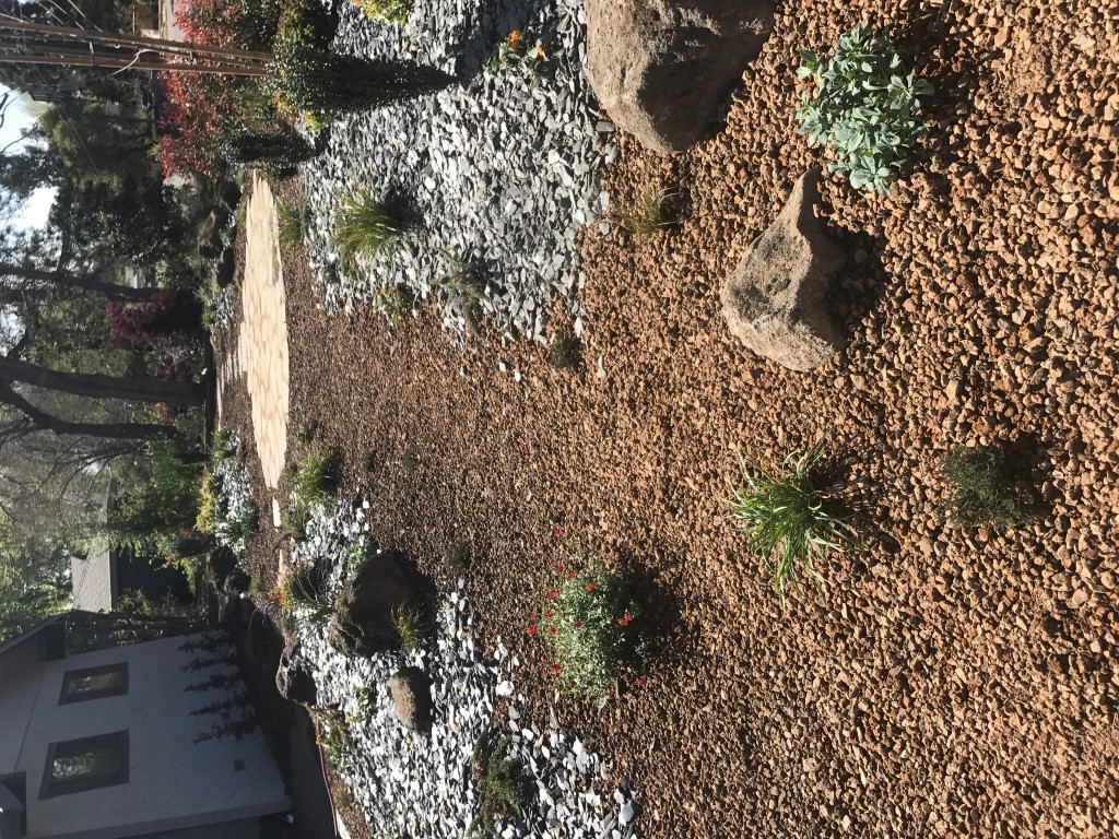 Drought landscape awesome drought tolerant landscaping for Drought tolerant landscape design