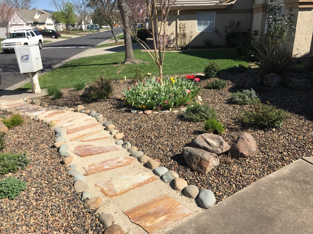 Drought Friendly Landscaping Good Drought Tolerant